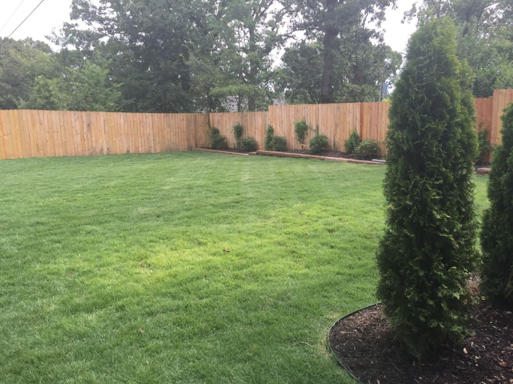 Serving LIttle Rock, North Little Rock and Maumelle to keep your lawns beautiful and healthy